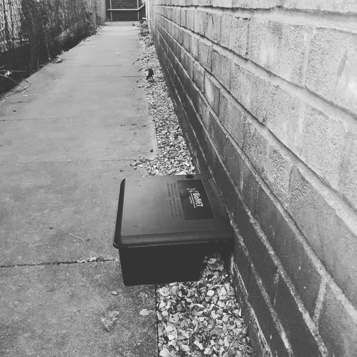 Rat Box